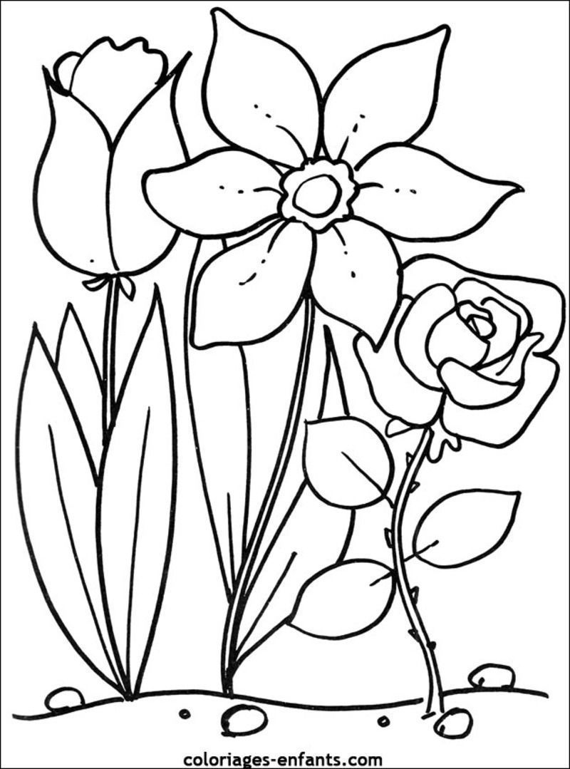 Scenery spring pictures fleurs de printemps coloriage - Image du printemps a colorier ...