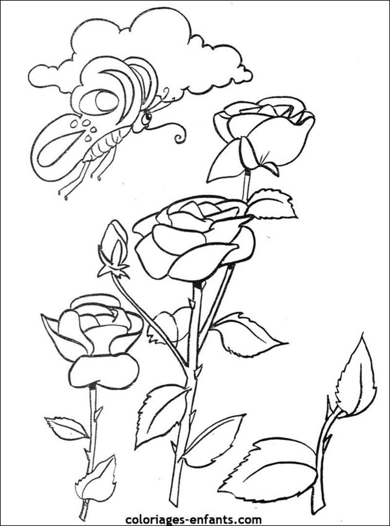 Coloriages divers fleurs - Dessin de fleur en couleur ...